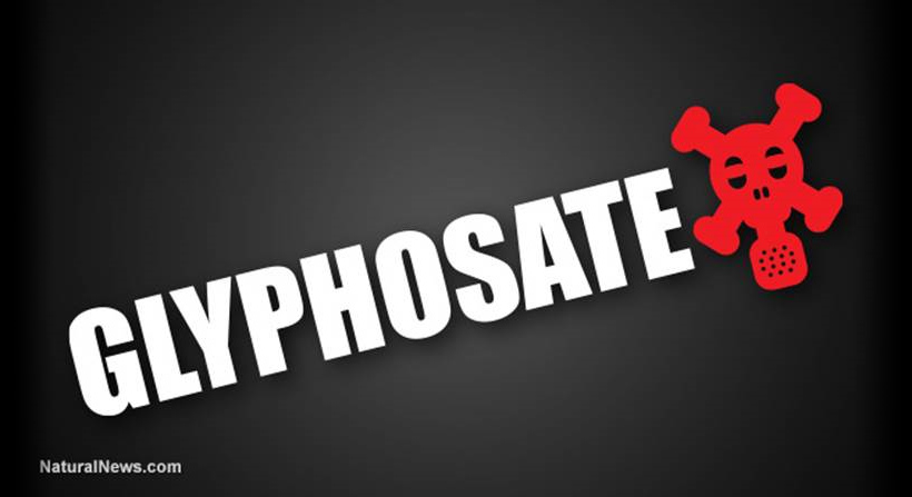 Is Glyphosate The New Zyklon B For All Of Us?